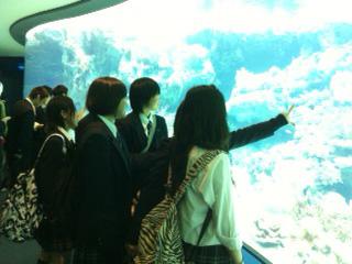 http://www.sundaigakuen.ac.jp/blog/school_trip/upload_images/kn3-2.jpg