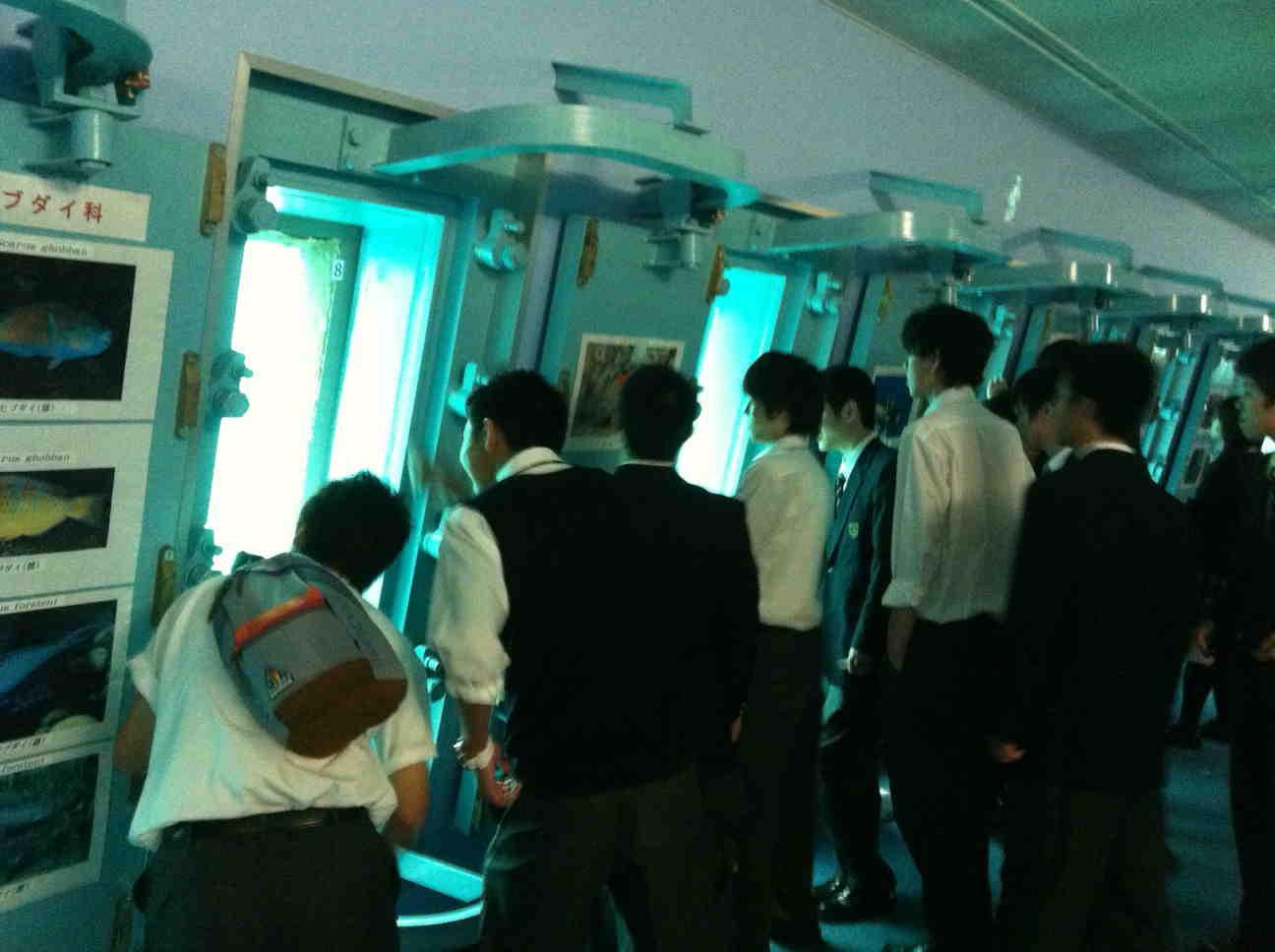 http://www.sundaigakuen.ac.jp/blog/school_trip/upload_images/kn5-1.jpg