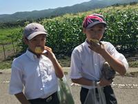 H30林間学校4-1.png